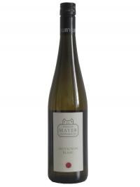 Weingut Mayer am Pfarrplatz - Sauvingnon Blanc 2016